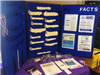 Franklin County Family Resource Center Information Booth